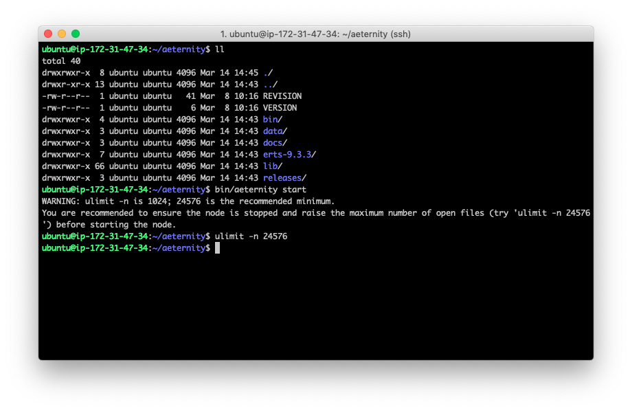 How to run your own Aeternity node on Amazon AWS 22