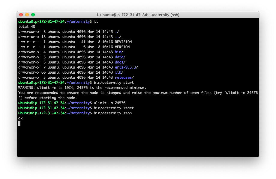 How to run your own Aeternity node on Amazon AWS 23